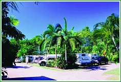 Tropical Hibiscus Caravan Park - Accommodation Nelson Bay