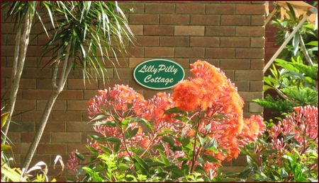 Lillypilly - Accommodation Nelson Bay