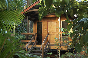 Cape Trib Beach House - Accommodation Nelson Bay