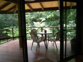 Cape Trib Exotic Fruit Farm Bed and Breakfast - Accommodation Nelson Bay