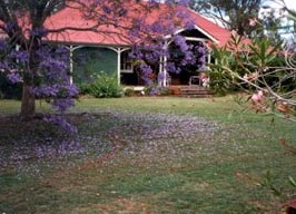 Minmore Farmstay Bed and Breakfast - Accommodation Nelson Bay