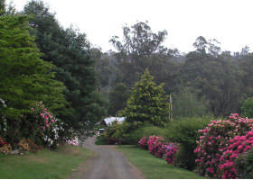 Mountain Rivers Lodge - Accommodation Nelson Bay