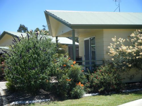 Pepper Tree Cabins - Accommodation Nelson Bay