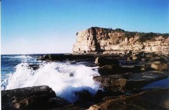 Terrigal Lagoon Bed and Breakfast - Accommodation Nelson Bay