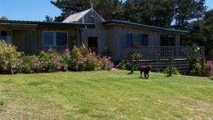 Clifton Beach Lodge - Accommodation Nelson Bay