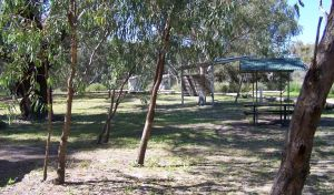 Coach and Horses campground - Accommodation Nelson Bay