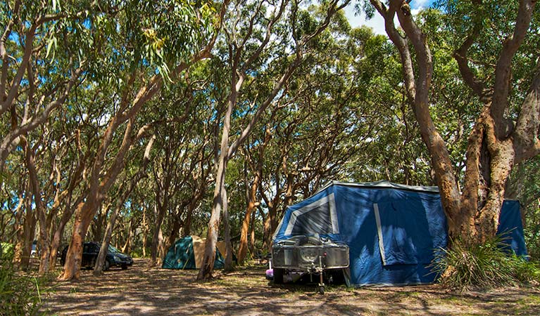 Stewart and Lloyds campground - Accommodation Nelson Bay