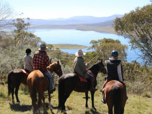 Reynella Homestead and Horseback Rides - Accommodation Nelson Bay