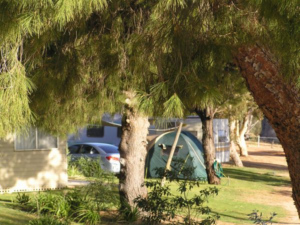 Barmera North Lake Caravan Park - Accommodation Nelson Bay