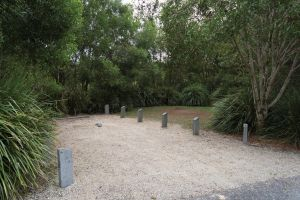 Springbrook National Park camping - Accommodation Nelson Bay