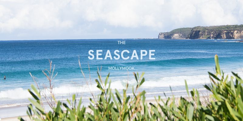Mollymook Seascape Motel  Apartments - Accommodation Nelson Bay