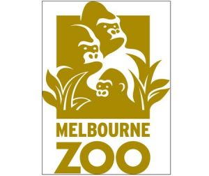 Melbourne Zoo - Accommodation Nelson Bay