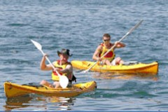 Manly Kayaks - Accommodation Nelson Bay