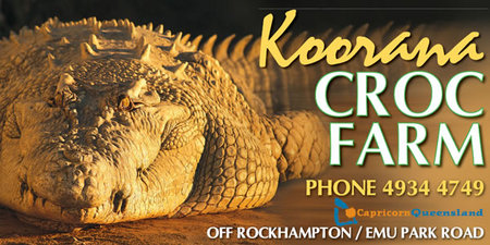 Koorana Saltwater Crocodile Farm - Accommodation Nelson Bay