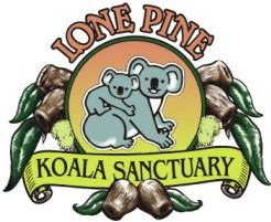 Lone Pine Koala Sanctuary - Accommodation Nelson Bay