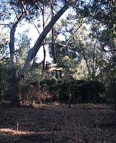 Ghost House Walk Trail Yanchep National Park - Accommodation Nelson Bay