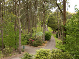 Mount Lofty Botanic Garden - Accommodation Nelson Bay