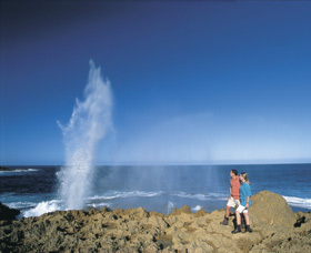 The Blowholes Carnarvon - Accommodation Nelson Bay