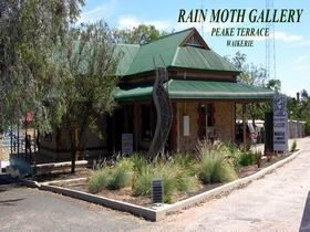 Rain Moth Gallery - Accommodation Nelson Bay