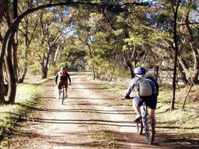 Bike About Mountain Bike Tours And Hire - Accommodation Nelson Bay