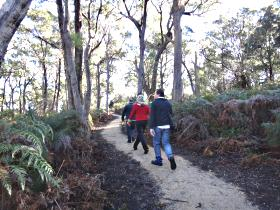 Bridport Walking Track - Accommodation Nelson Bay