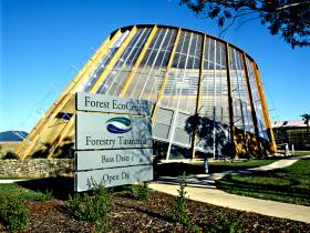 Forest EcoCentre - Accommodation Nelson Bay