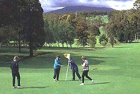 Deloraine Golf Course - Accommodation Nelson Bay