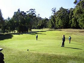 Sheffield Golf Course - Accommodation Nelson Bay