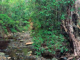 Mudlo National Park - Accommodation Nelson Bay