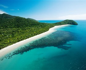 Cape Tribulation Daintree National Park - Accommodation Nelson Bay