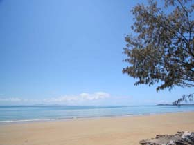 Blacks Beach - Accommodation Nelson Bay