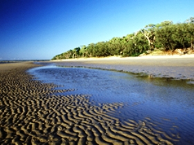 Burrum Coast National Park - Accommodation Nelson Bay