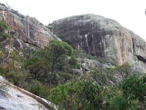 Mount Walsh National Park - Accommodation Nelson Bay