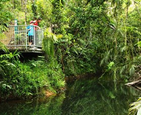 Djiru National Park - Accommodation Nelson Bay