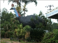 The Big Cassowary - Accommodation Nelson Bay