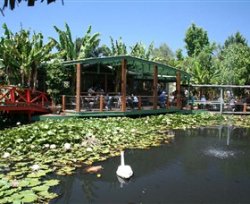 Blue Lotus Water Garden - Accommodation Nelson Bay