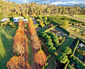 High Country Maze - Accommodation Nelson Bay