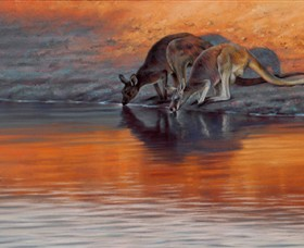 Steve Morvell Wildlife Art - Accommodation Nelson Bay
