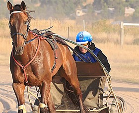 Ballarat  District Trotting Club - Accommodation Nelson Bay