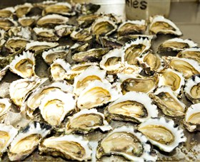Wheelers Oysters - Accommodation Nelson Bay