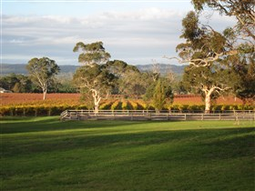 Top Note Vineyard - Accommodation Nelson Bay