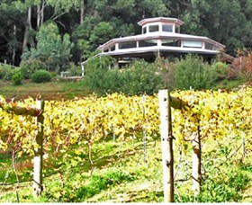 Peveril Vineyard/Beechy Berries - Accommodation Nelson Bay