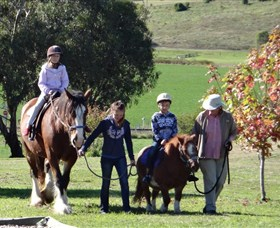 Bathurst Farm Experience - Accommodation Nelson Bay