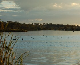 Lake Inverell Reserve - Accommodation Nelson Bay