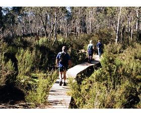 Hume and Hovell Walking Track - Henry Angel Trackhead - Accommodation Nelson Bay
