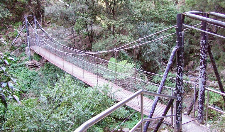 Jenolan River walking track - Accommodation Nelson Bay
