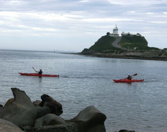 Newcastle Kayak Tours - Accommodation Nelson Bay