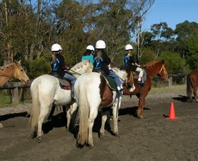 Darkes Forest Riding Ranch - Accommodation Nelson Bay
