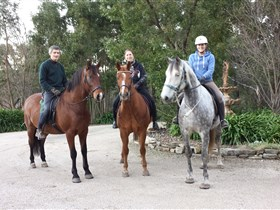 Academy of Dressage - Accommodation Nelson Bay