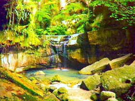 Carnarvon Gorge Carnarvon National Park - Accommodation Nelson Bay